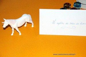 Anniversaire Licornes : expériences sur les couleurs